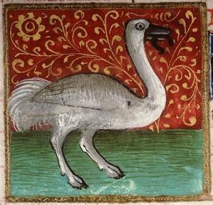Amiens, Bibl. mun., ms. 0399, f. 147v. Bartholomaeus Anglicus, Jean Corbechon (transl.) Livre des propriétés des choses, 1447