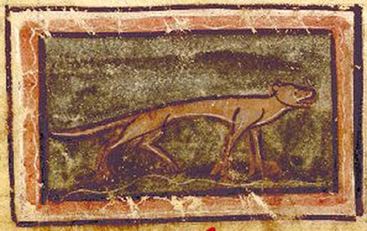 Fig. 1. Comadreja. Biblioteca Nacional de Francia, Ms. Fr. 1444b, fol. 251 v.