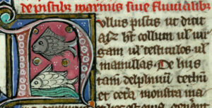 Thomas de Cantimpré, Liber de Natura rerum, Valenciennes, Ms 320